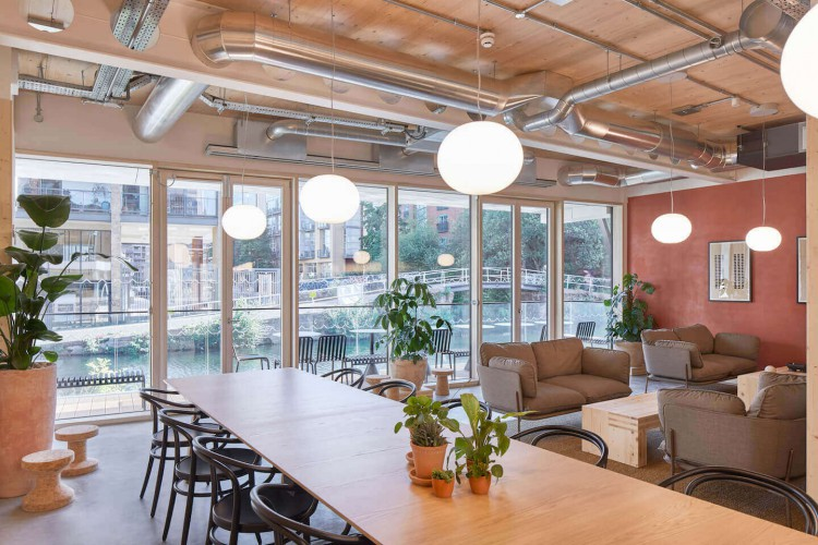 Celebrating biophilic design in the shared space zone to offer a warm welcome to clients at the stunning Managed Workspace Rental in Haggerston.