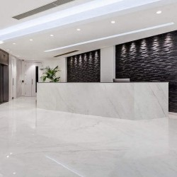 Serviced Office reception at 65 Curzon Street, Mayfair, offering SME's and corporates the support and services they require.