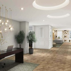 Serviced office building reception at 64 North Row, Mayfair.