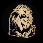 Ducere Linkedin Logo